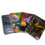 Cuaderno 5 Materias Argollado Económico